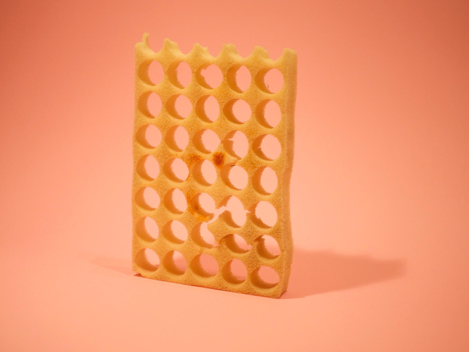 01_sponge