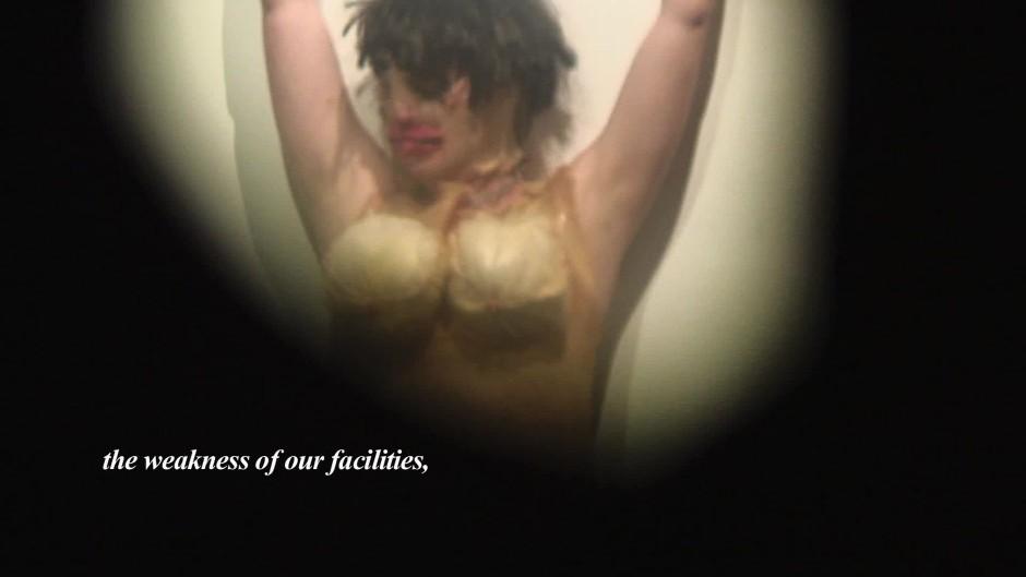 Francesca Heinz, Part Four (Performance #1) (2010) stills from HD video