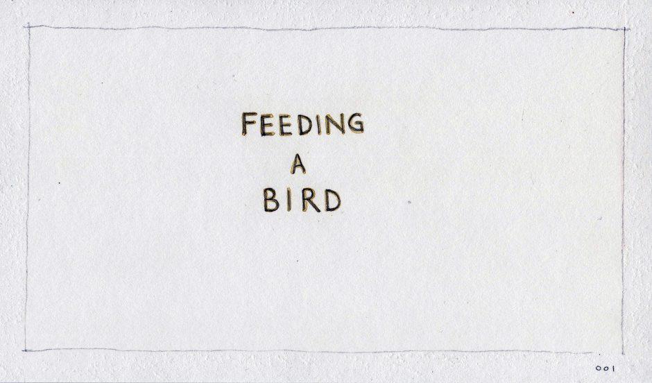 Feeding A Bird: Scene 1