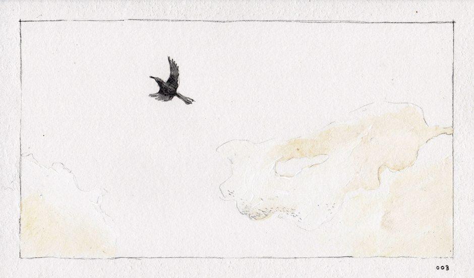 Feeding A Bird: Scene 3