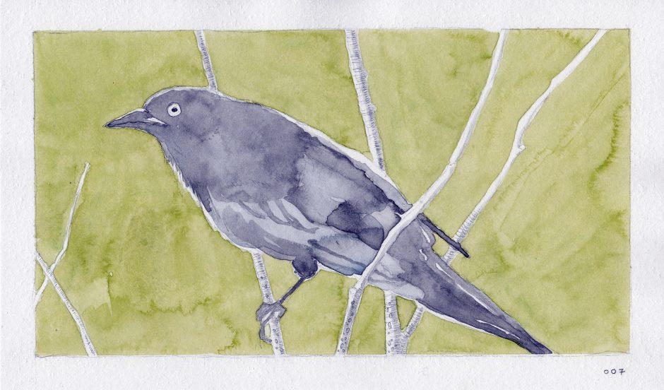 Feeding A Bird: Scene 7