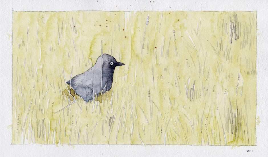 Feeding A Bird: Scene 11