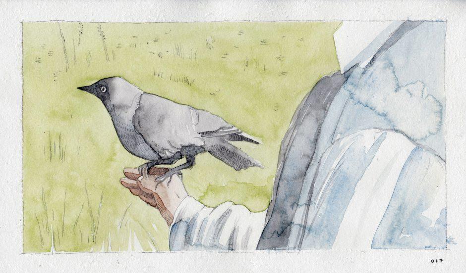 Feeding A Bird: Scene 17