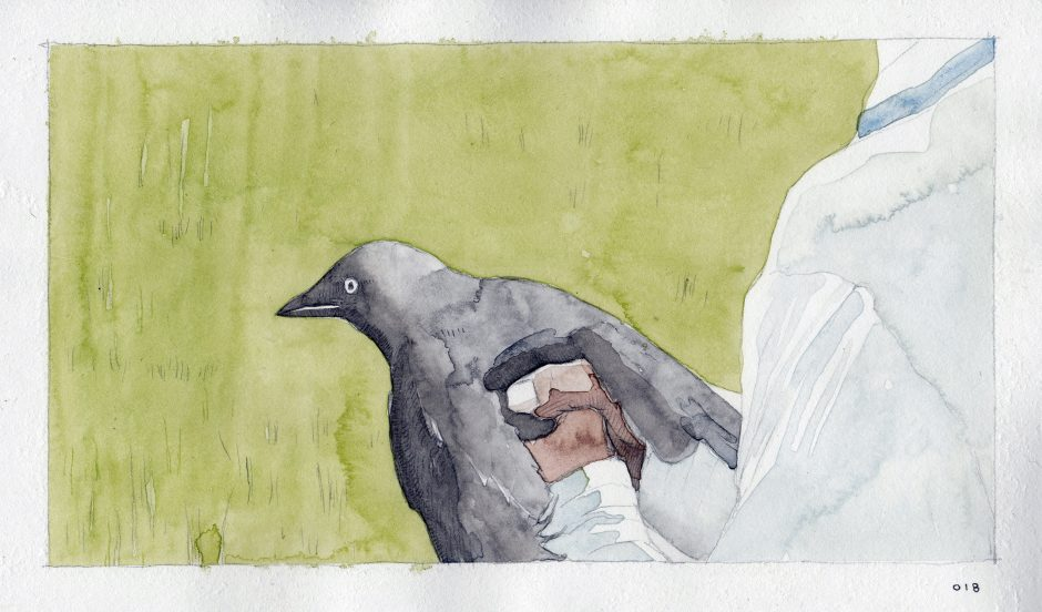 Feeding A Bird: Scene 18